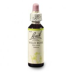 Planá šípková růže (Wild Rose) 20 ml