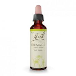 Bílá lesní réva (Clematis) 20 ml