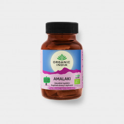 Amalaki - antioxidant přírodní vitamín C BIO cps.60