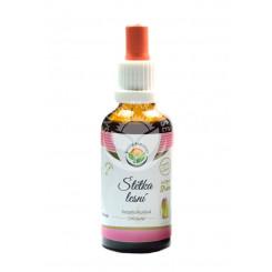 Salvia Paradise Štětka lesní AF tinktura 50 ml