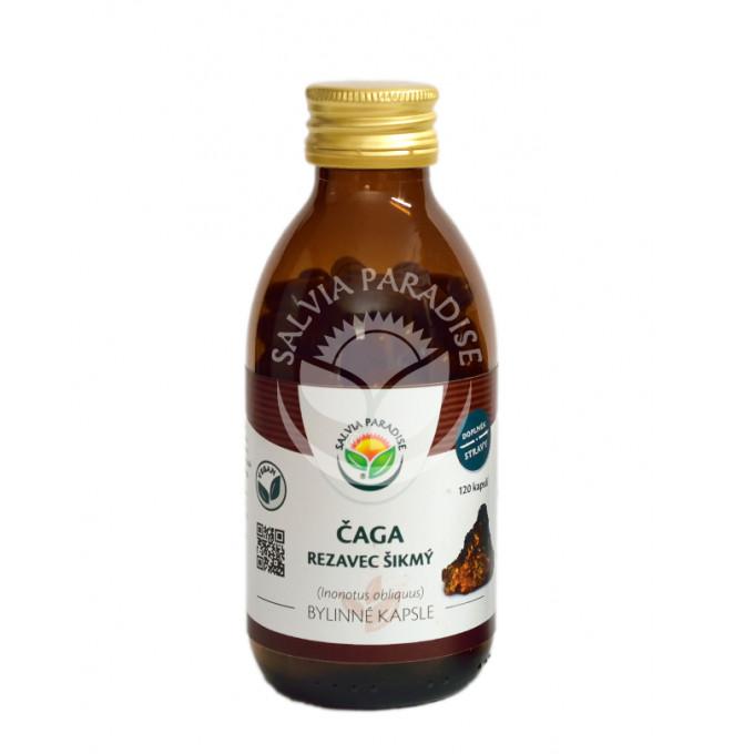 Salvia Paradise Čaga - rezavec šikmý 120 kapslí