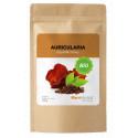 MycoMedica Auricularia Bio prášek 100 g